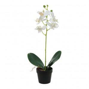 Decor and add-ons - Planta artificial orquidea blanca EDM 83399