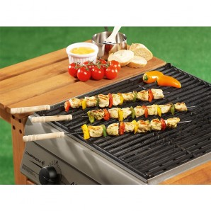Pack 4 brochettes for barbecue