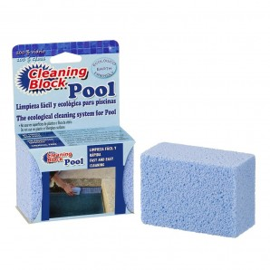Cleaning block Swimming pool with individual flap