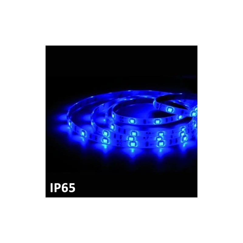 Led strip 5m BLUE SMD5050 (7.2 w) IP65 24V GSC 1504594