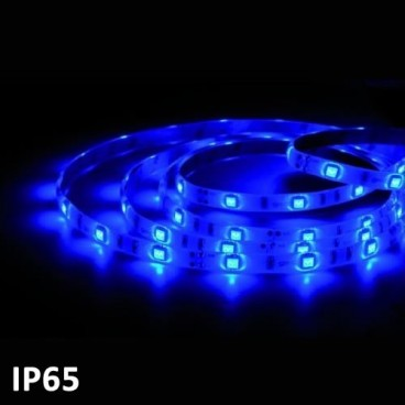 Led strip 5m BLUE SMD5050 7.2 W/m IP65 24V GSC 1504594