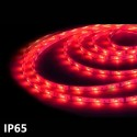 Led strip 5m RED SMD5050 (7.2 w) IP65 24V GSC 1504595