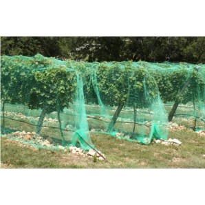 Mosquito net fabric in rolls - Net anti-birds 4x5mts ideal fruit trees